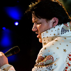 It's Elvis!
