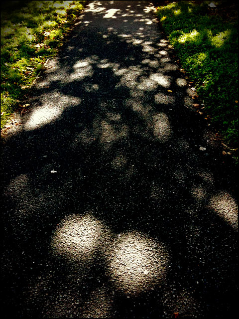 Light and Shadow, Maynooth, Ireland, 2010